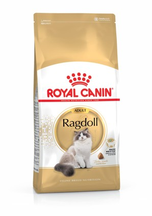 Royal canin Breed  Feline Ragdoll