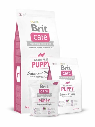 Brit Care Dog Grain-free Puppy Salmon/Potato