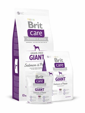 Brit Care Dog Grain-free Giant Salmon/Potato