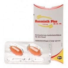 Banminth plus