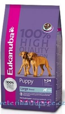 Eukanuba Dog Puppy+Junior Large Breed