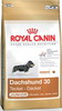 Royal Canin Breed Jezevčík Junior